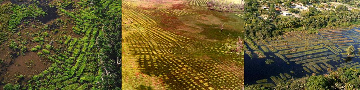 earthmovers-bandeau
